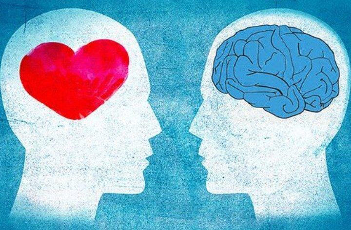 Η θεωρία της πολλαπλής νοημοσύνης